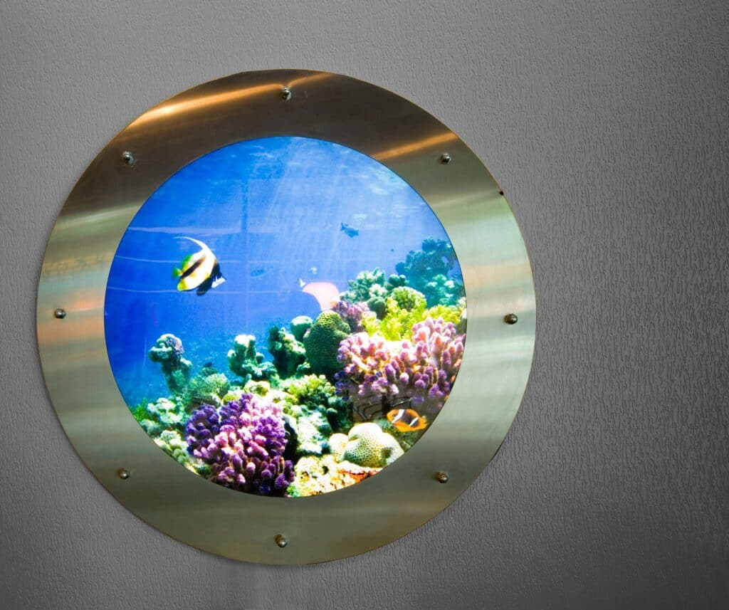 best wall mounted aquarium