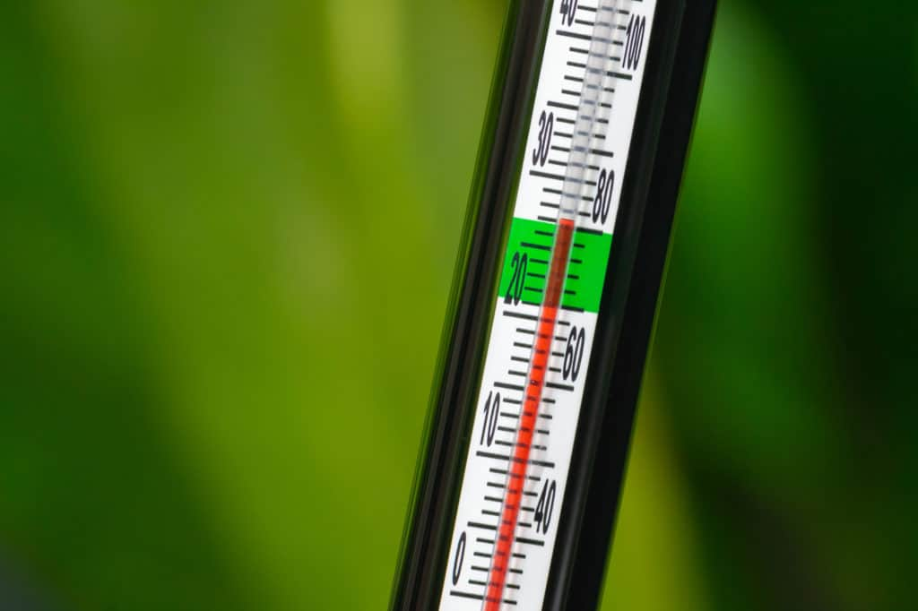 Fish tank water temperature thermometer