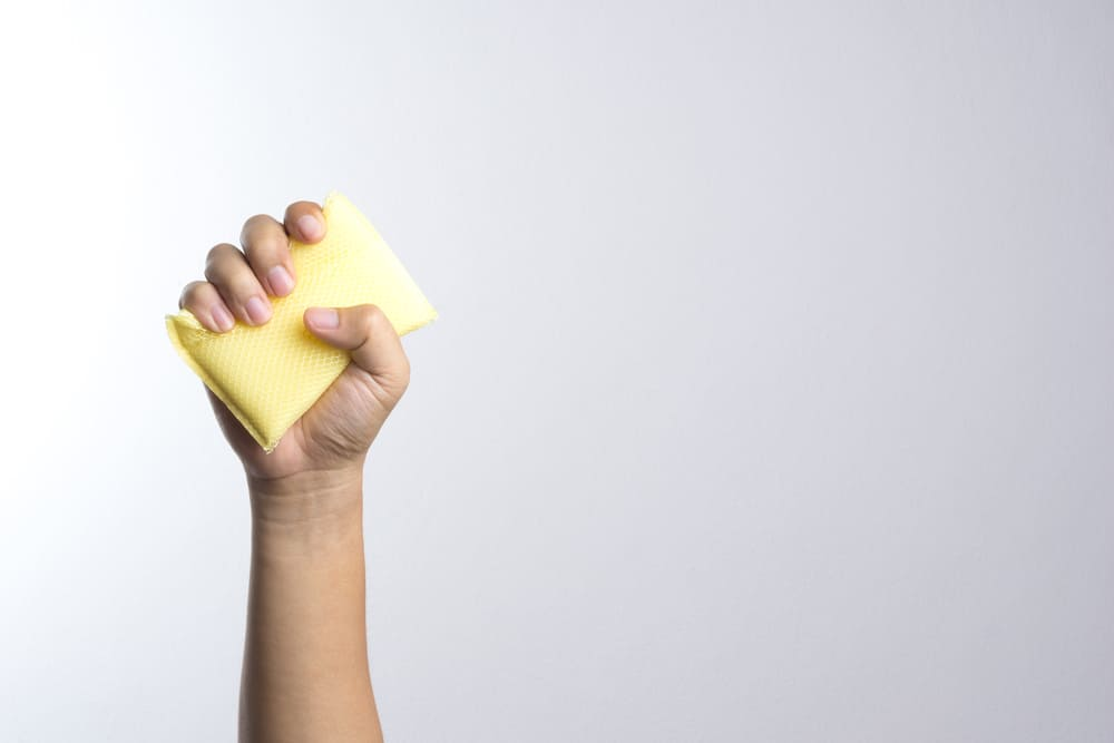 Hand holding a cleaning sponge