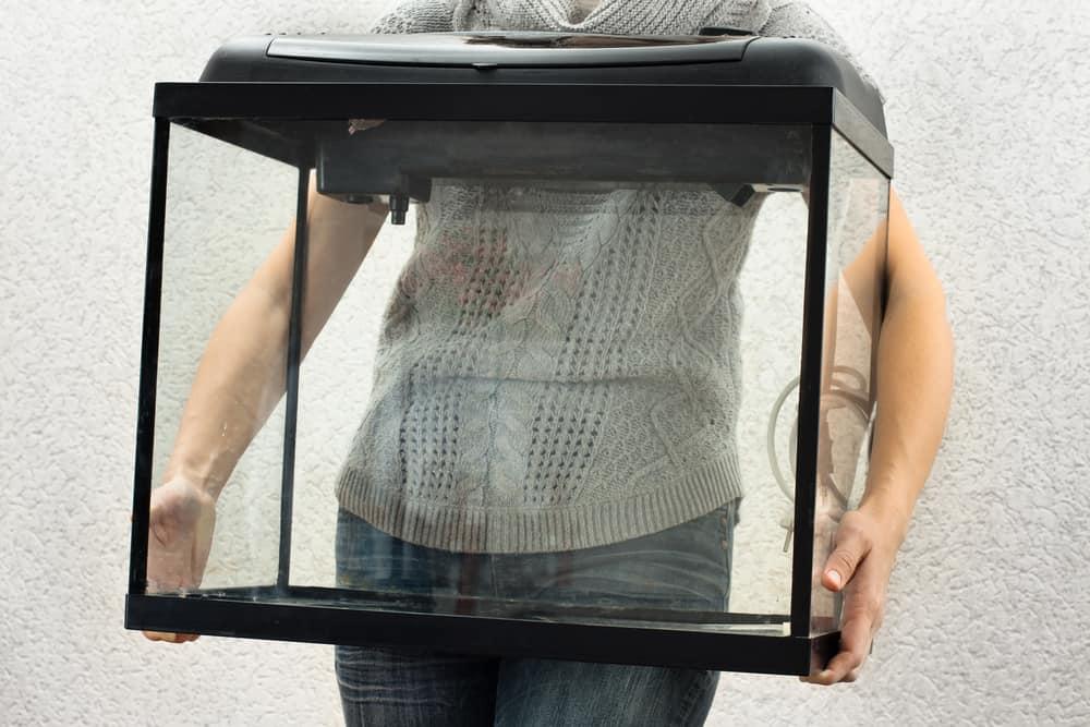 woman holding empty aquarium to restart it at home